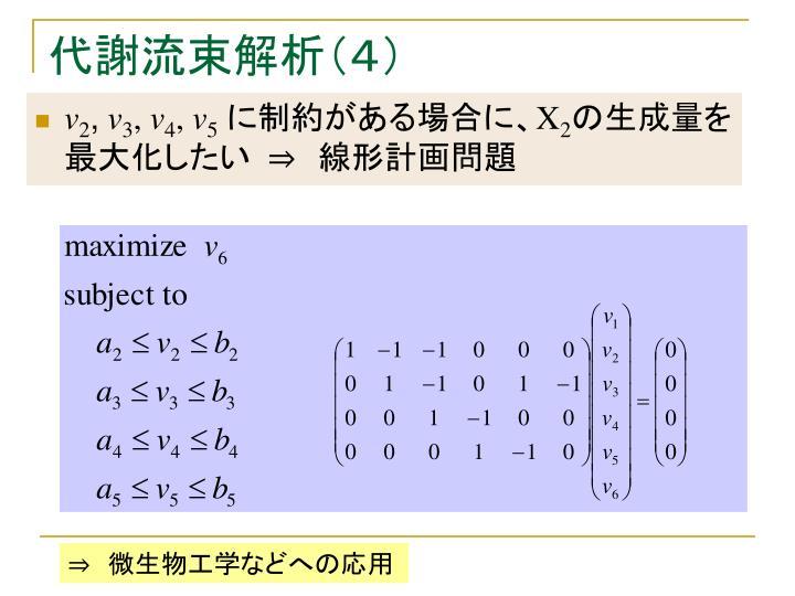 代謝流束解析(4)