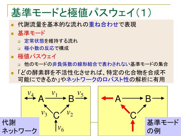 基準モードと極値パスウェイ(1)