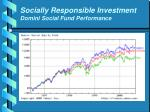 socially responsible investment domini social fund performance