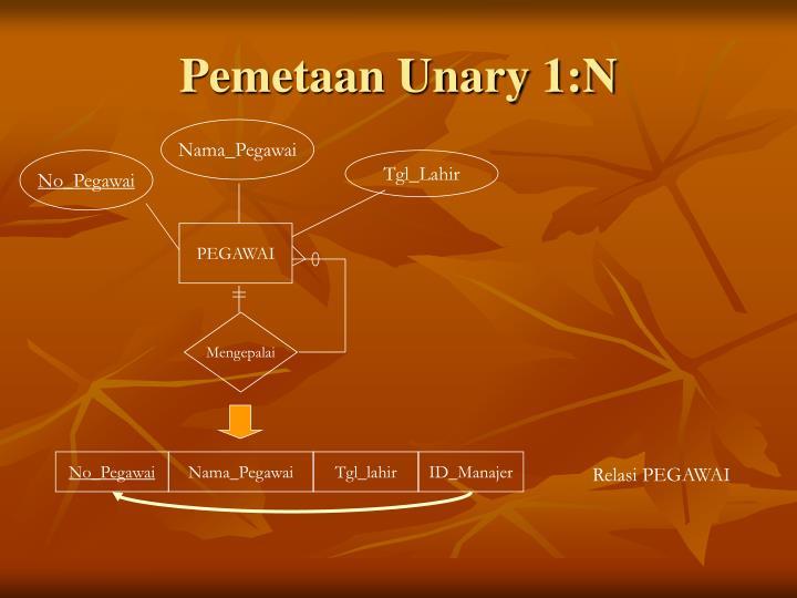 Pemetaan Unary 1:N