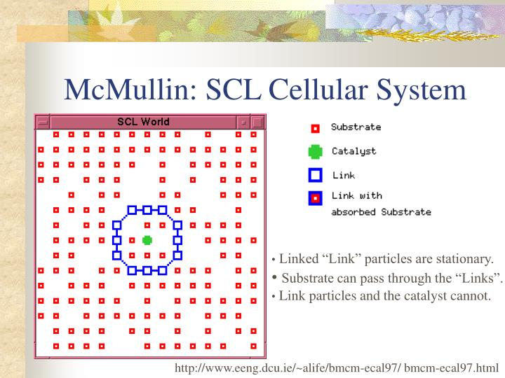McMullin: SCL Cellular System