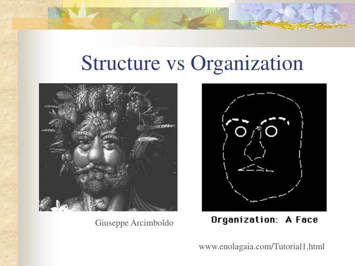 Structure vs Organization
