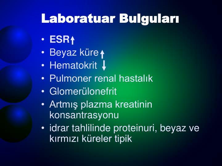 Laboratuar Bulguları