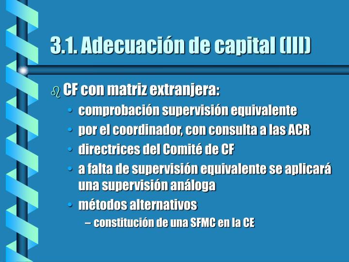 3.1. Adecuación de capital (III)