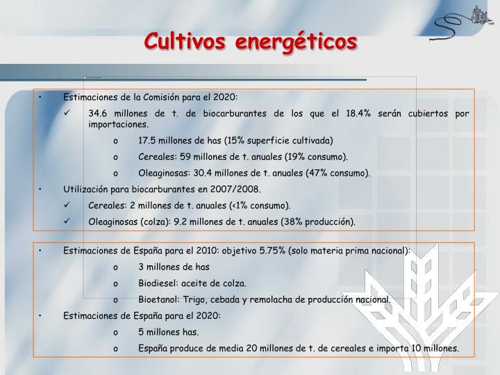 Cultivos energéticos