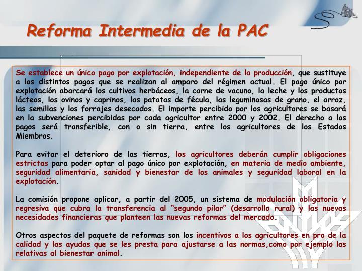 Reforma Intermedia de la PAC