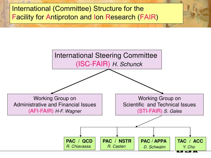 International (Committee) Structure for the