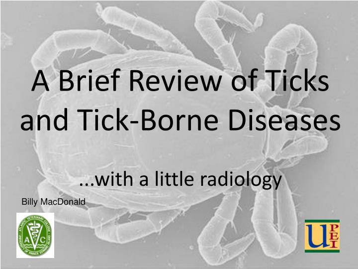 a brief review of ticks and tick borne diseases with a little radiology n.
