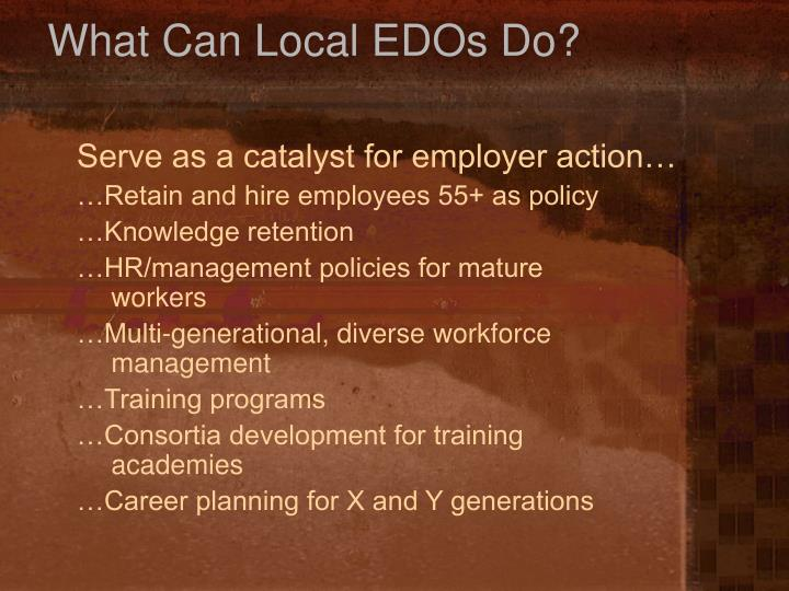What Can Local EDOs Do?