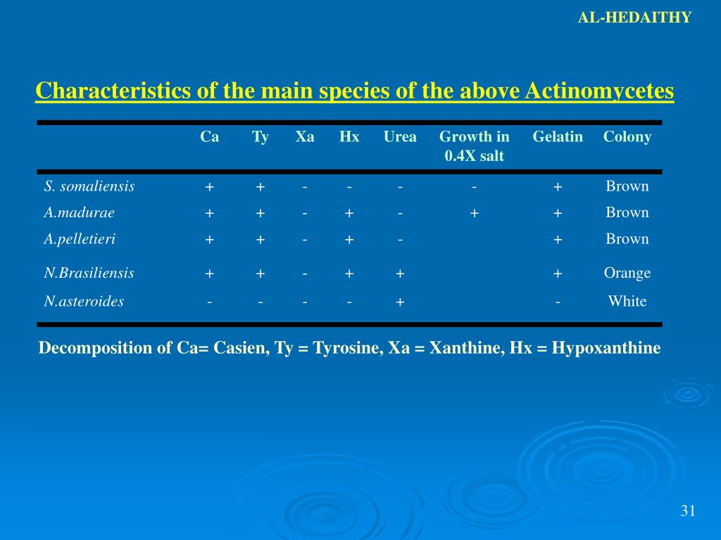 ppt medical mycology lecture slides powerpoint