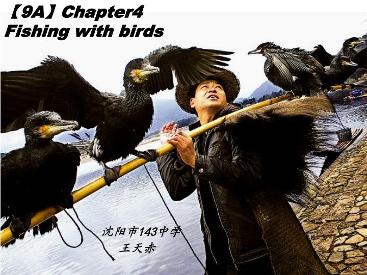 9a chapter4 fishing with birds