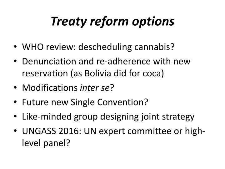Treaty reform options