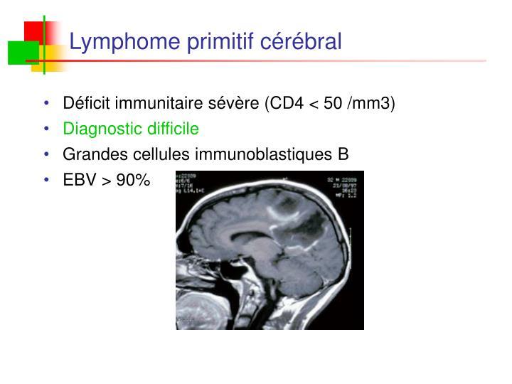 Déficit immunitaire sévère (CD4 < 50 /mm3)