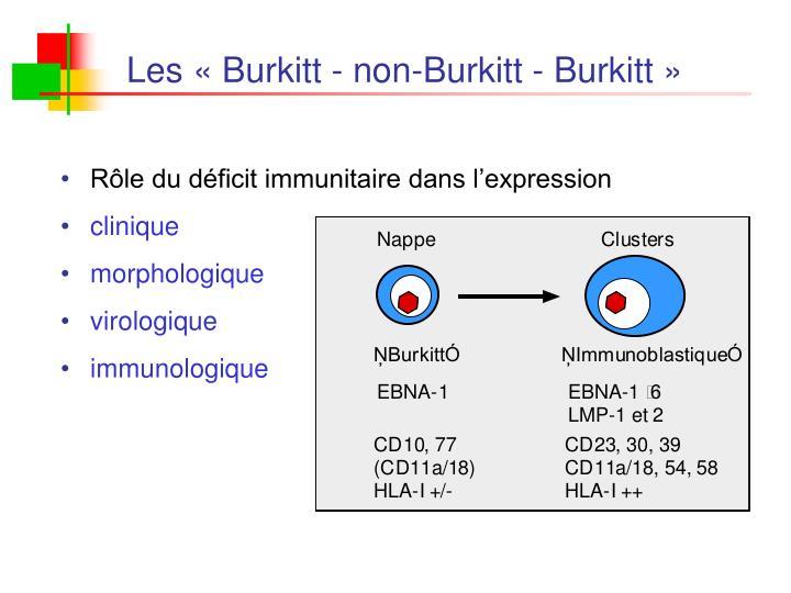 Rôle du déficit immunitaire dans l'expression
