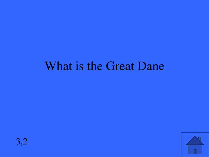 What is the Great Dane