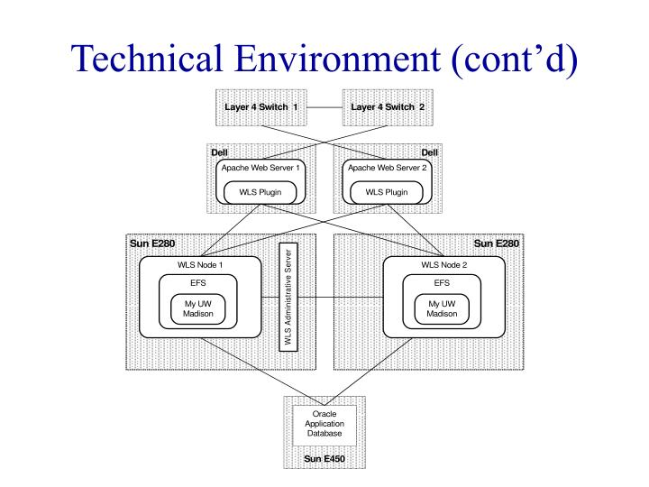 Technical Environment (cont'd)