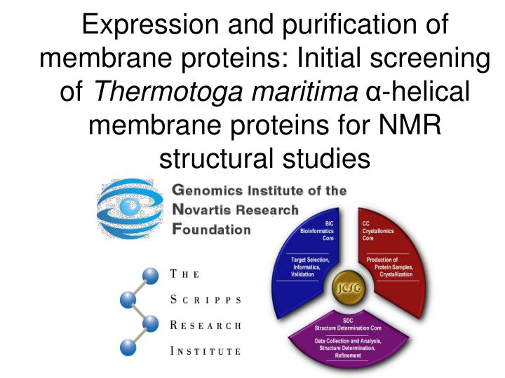 Expression and purification of membrane proteins: Initial screening of