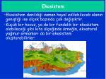ekosistem1