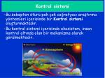 kontrol sistemi
