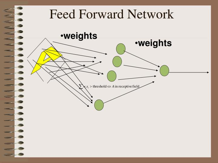 Feed Forward Network