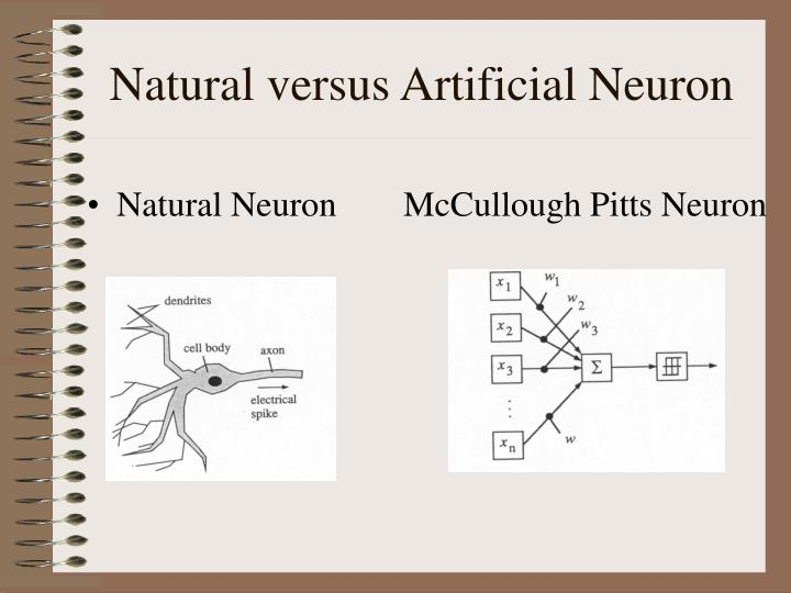 Natural versus Artificial Neuron