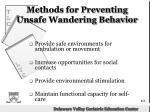 methods for preventing unsafe wandering behavior