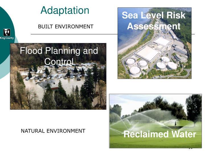 Sea Level Risk Assessment