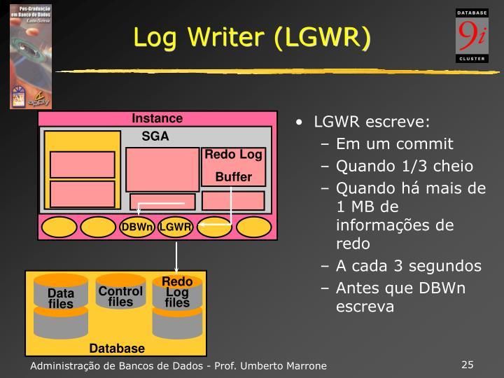 Log Writer (LGWR)