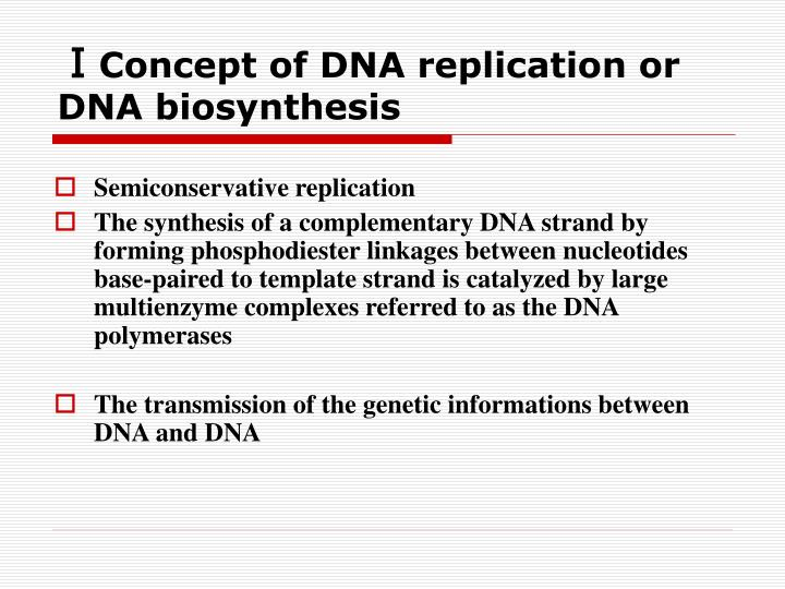 Concept of dna replication or dna biosynthesis