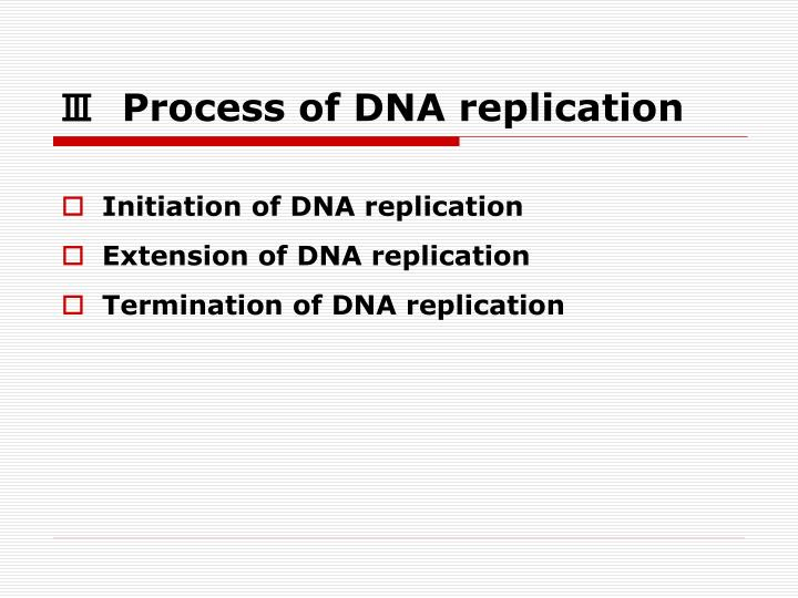 Ⅲ  Process of DNA replication