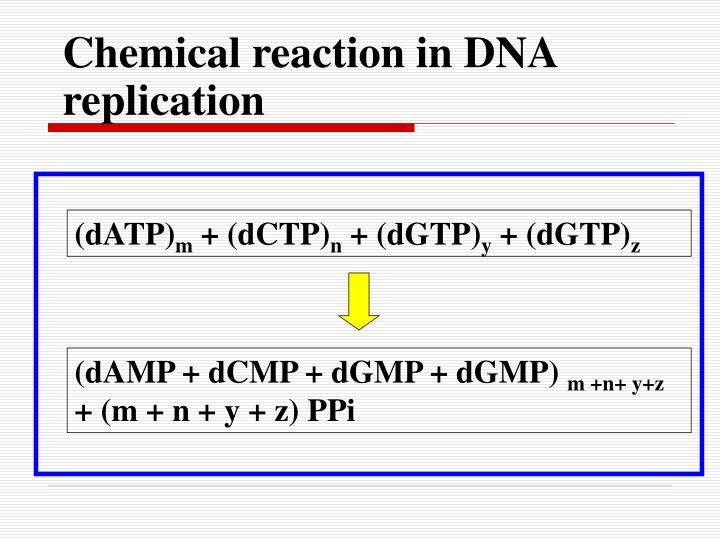 Chemical reaction in DNA replication