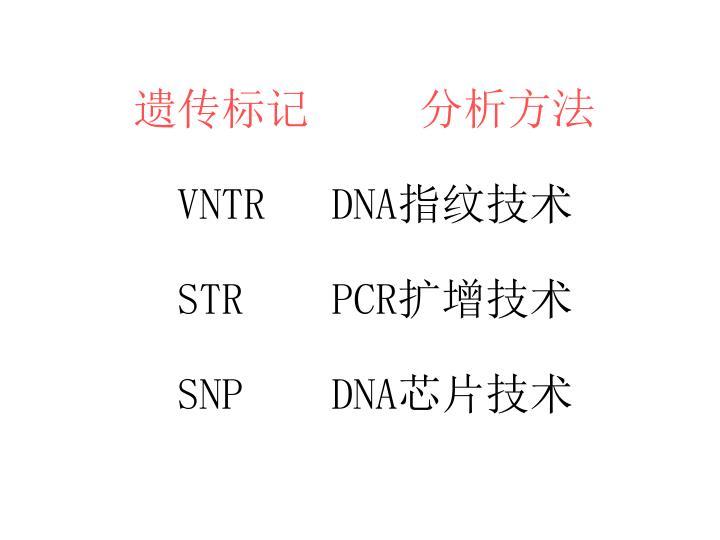 遗传标记     分析方法