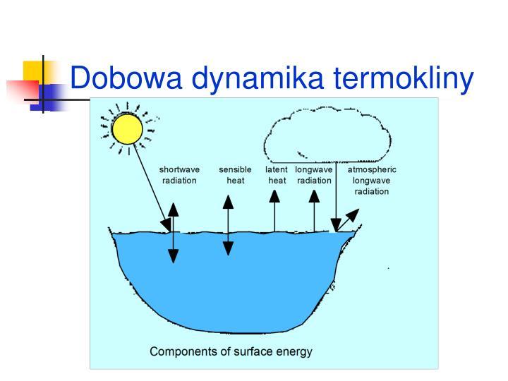 Dobowa dynamika termokliny
