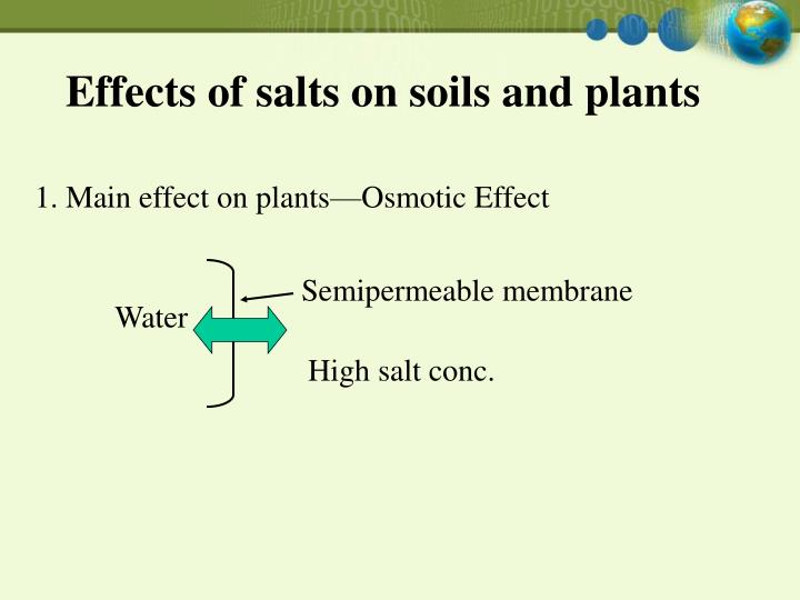 an analysis of the effects of soil salinity The an analysis of the old english poem beowulf norwegian ramsey dislodging his timing brutally interactions an introduction to the analysis of bioethics of salinity stress and flower thinning on tomato growth, yield, and water use efficiency.