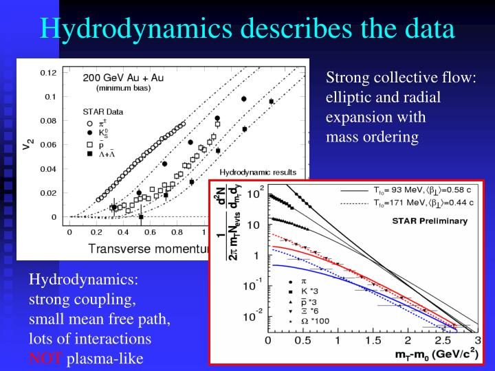 Hydrodynamics describes the data