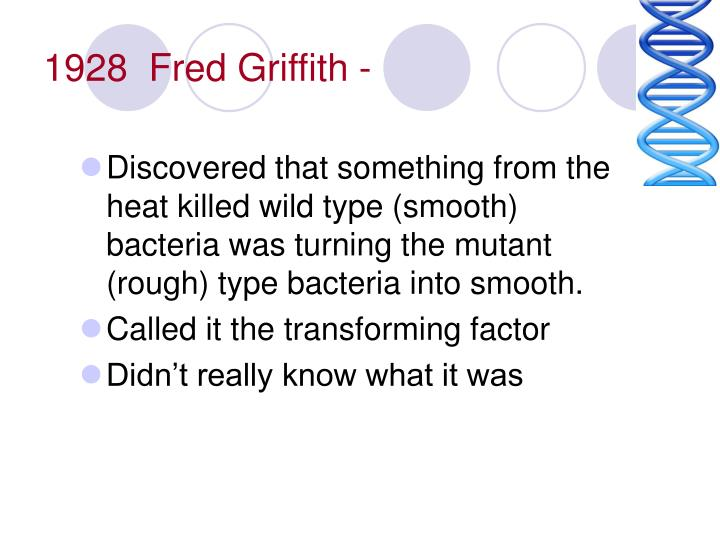 1928  Fred Griffith -