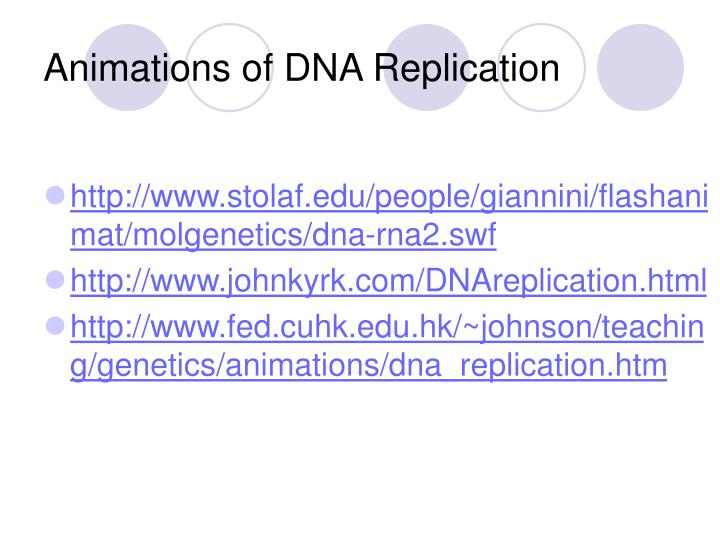 Animations of DNA Replication