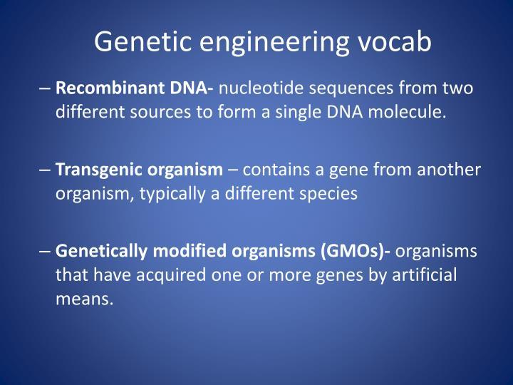 Genetic engineering vocab