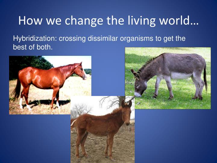 How we change the living world1