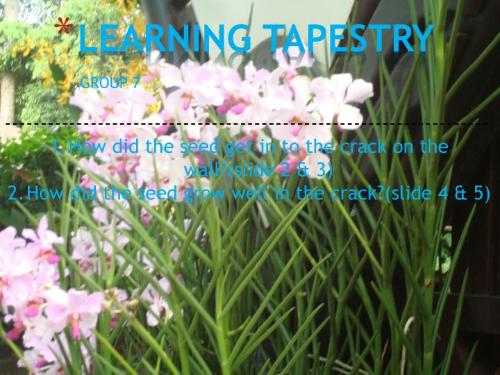 learning tapestry n.