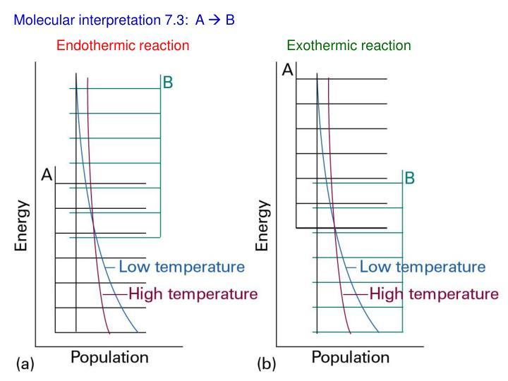 Molecular interpretation 7.3:  A
