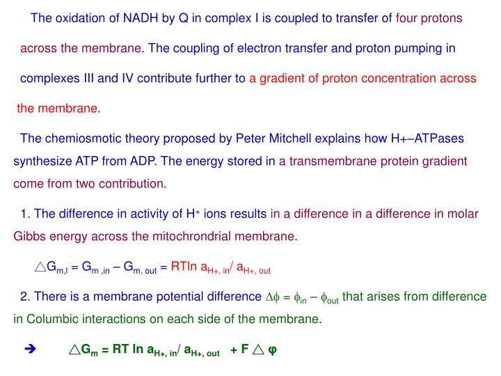 The oxidation of NADH by Q in complex I is coupled to transfer of