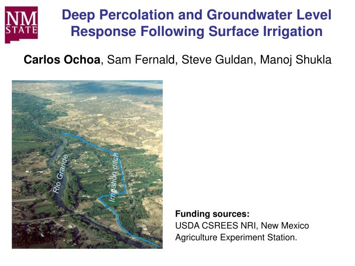 deep percolation and groundwater level response following surface irrigation n.