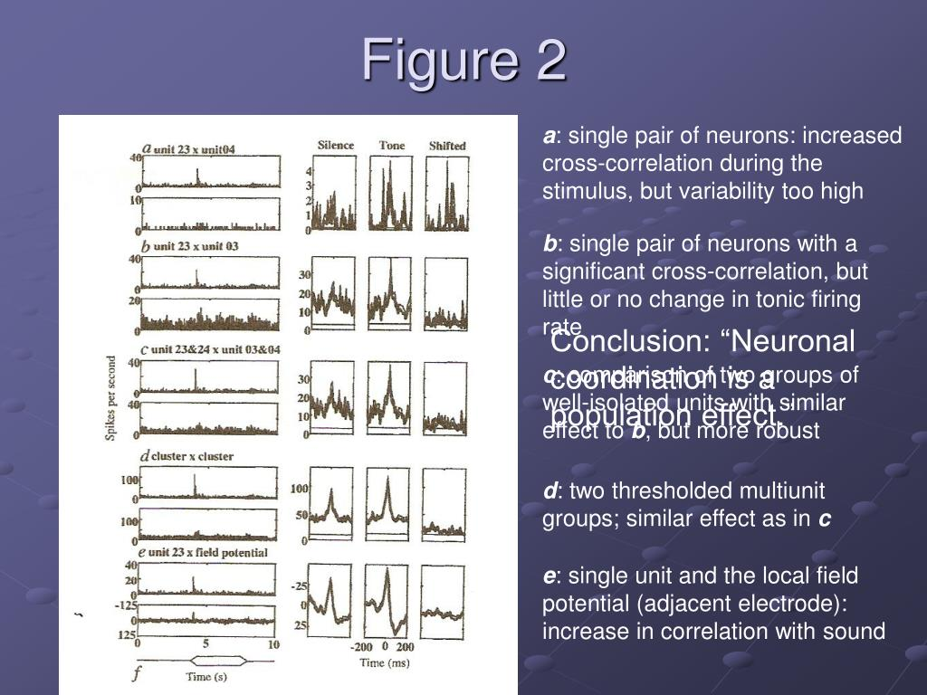 PPT - Primary Cortical Representation of Sounds by the Coordination