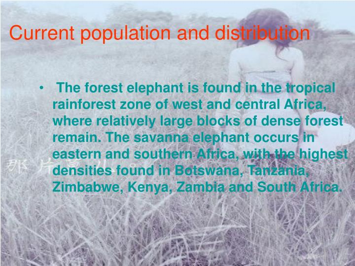 Current population and distribution