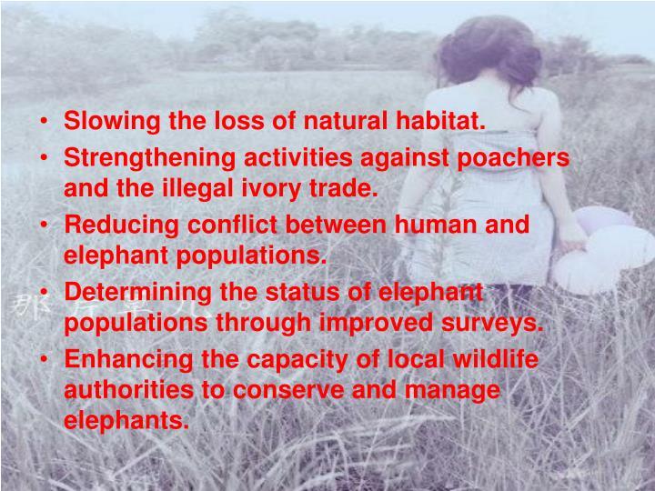 Slowing the loss of natural habitat.