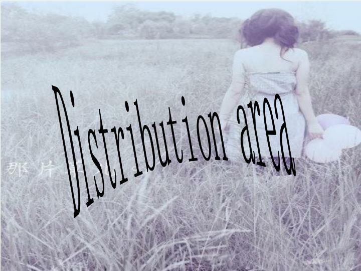 Distribution area