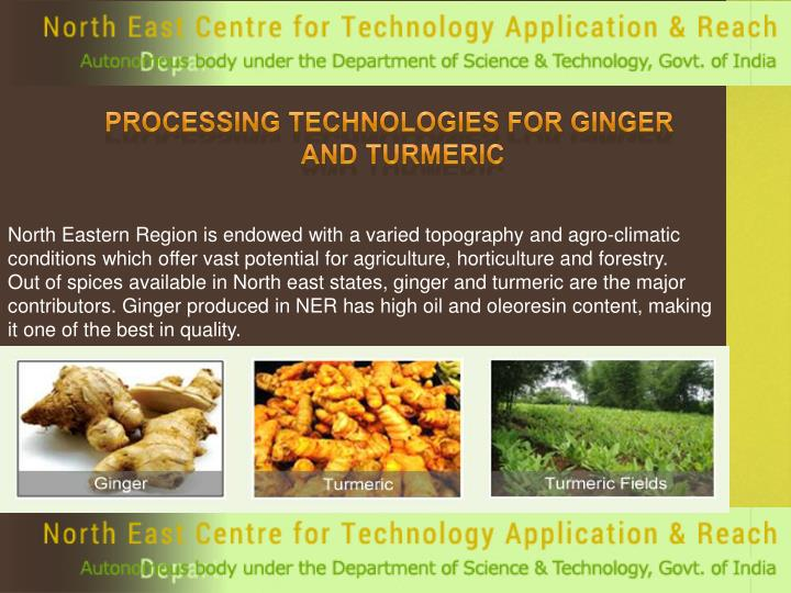 Processing Technologies for Ginger