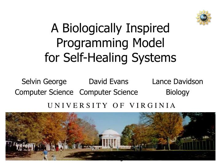 a biologically inspired programming model for self healing systems