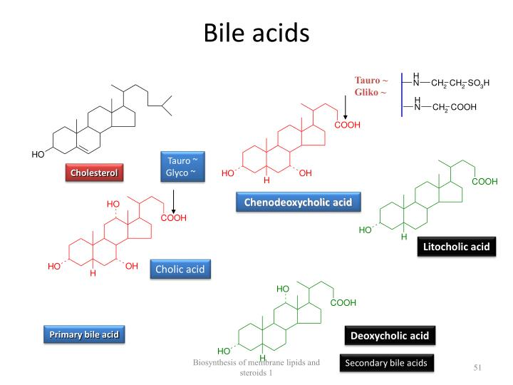 Bile acids